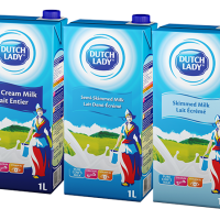 Dutch Lady Boxed Milk 1L