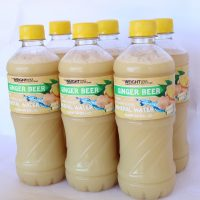 The Weight Loss Coach – Ginger Beer 6 Pack