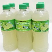 The Weight Loss Coach – Lime Sqaush (6 pack)