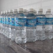 The Weight Loss Coach – 100% Natural Spring Mineral Water 500ml (6 Pack)